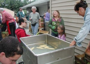Here is a photo essay of the corn processing at the Woodcrest Community this past Tuesday. It was a wonderful day.