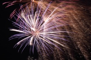 New Paltz 4th of July Celebration Sunday July 1st at the Ulster County Fairgrounds