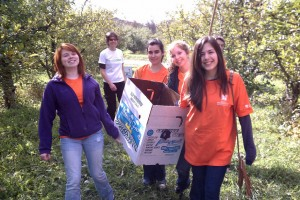UlsterCorps Vice President Nancy Pompeo with SUNY New Paltz student volunteers gleaning apples at Little Dog Orchard, Clintondale, NY, for local soup kitchens on Make a Difference Day, October 22, 2011
